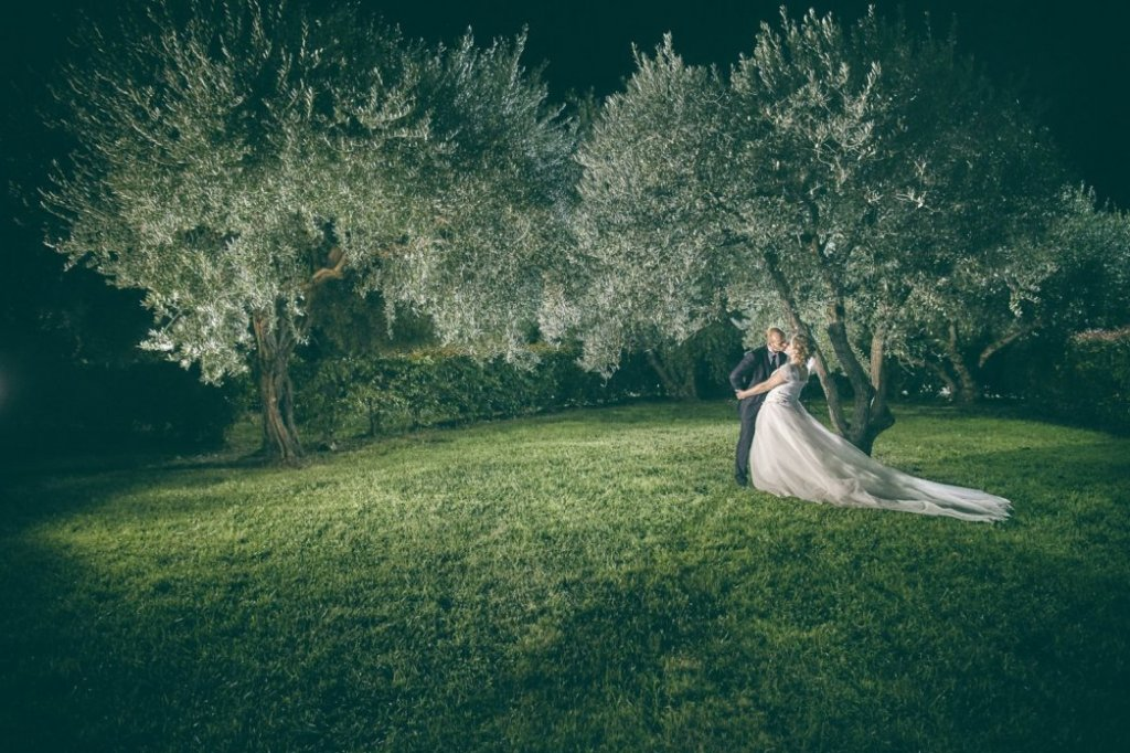 olive trees for land wedding italy
